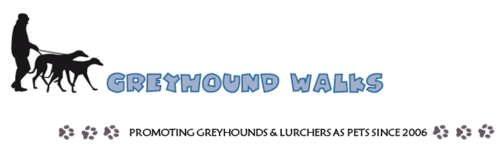 Greyhound Walks