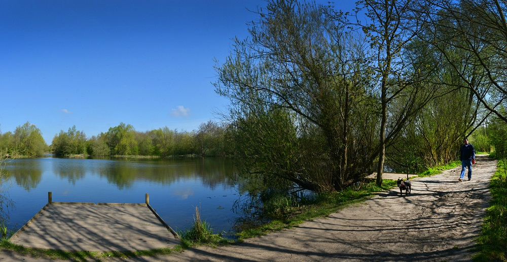 Photo of a lakeside trail at Belhus Woods.