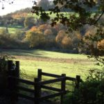Autumnal photo of the view from the kissing gate at Hadleigh Country Park.