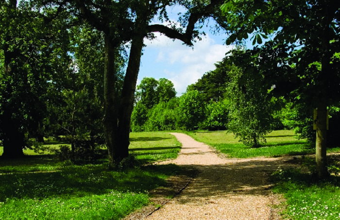 Photo of the main path through Leavesden Country Park.