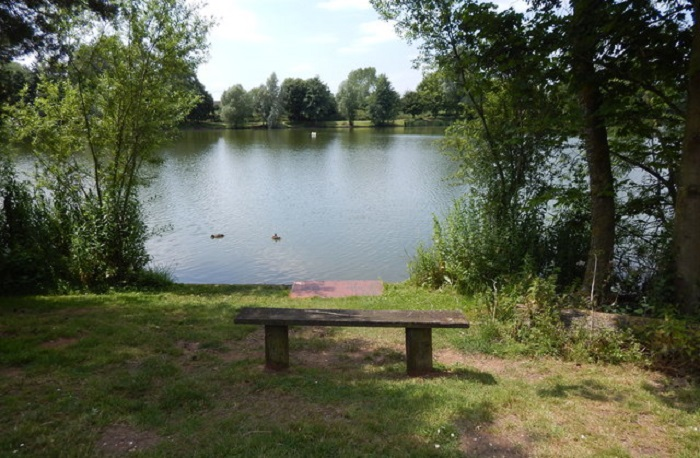 Photo of a quiet spot at Needham Lakes.