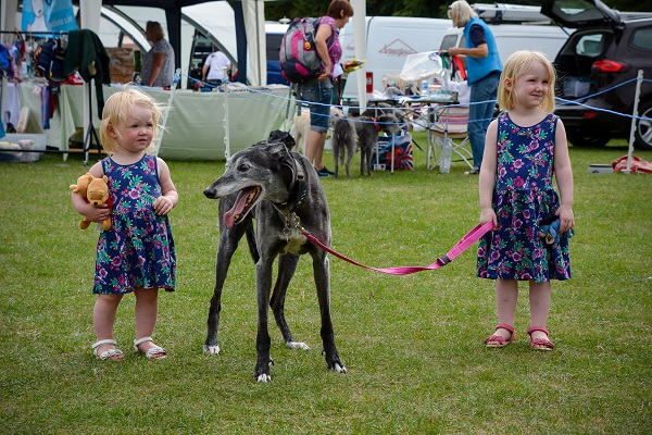 Photo of 2 toddlers with a large black greyhound.