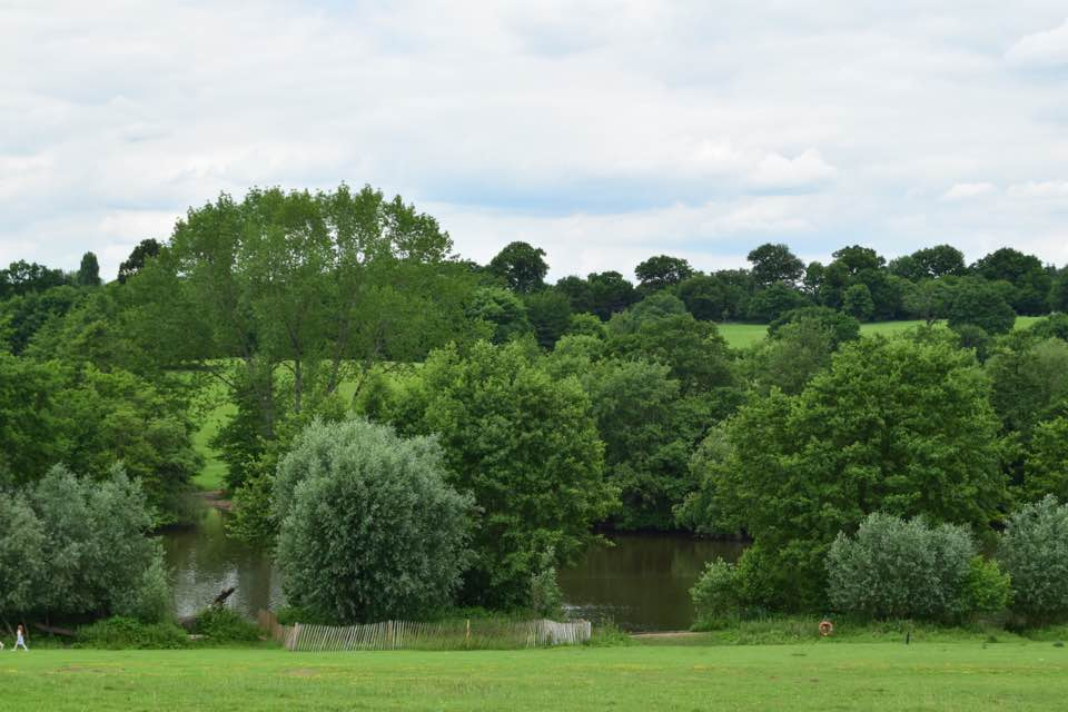 View of the lake at Weald Country Park.