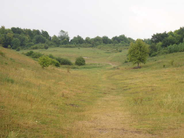 Royston Therfield Heath